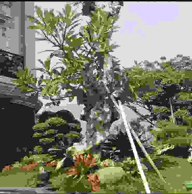 Kontraktor Taman Surabaya Timur Oleh Tukang Taman Surabaya - Tianggadha-art Mediteran Batu
