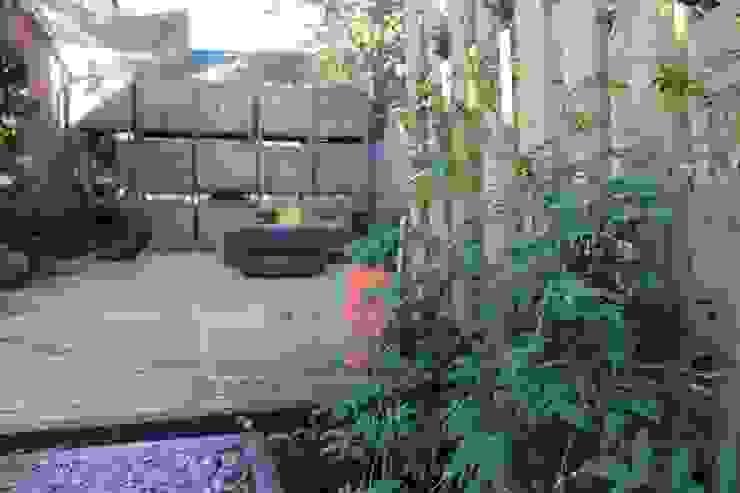 Enredaderas de Tallo Taller Industrial Madera Acabado en madera