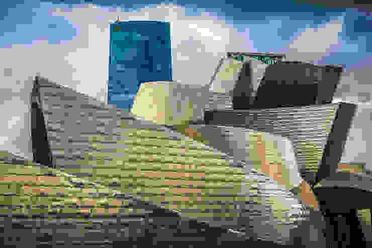Frank O. Gerhy Carlos Sánchez Pereyra | Artitecture Photo | Fotógrafo Museos de estilo moderno