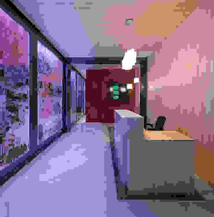 Vestíbulo del edificio Oficinas y tiendas de estilo moderno de Xmas Arquitectura e Interiorismo para reformas y nueva construcción en Barcelona Moderno Madera Acabado en madera