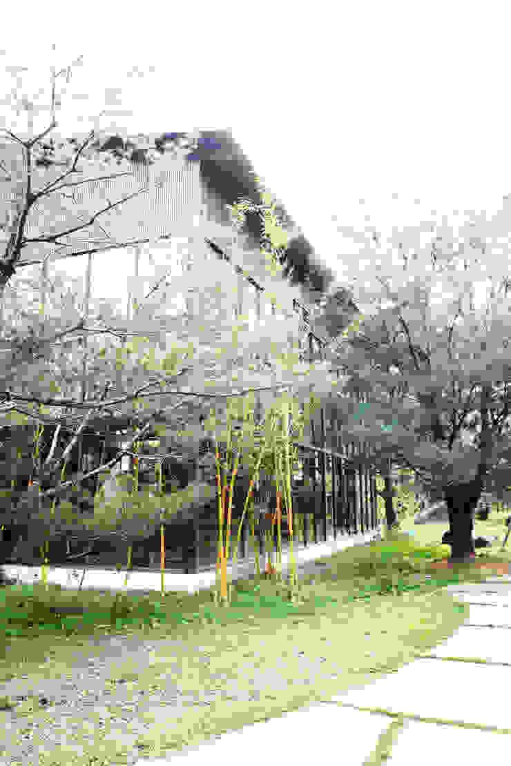 屋外種植大片竹林與松樹更有文人高風亮節的氣息 by 台中室內建築師|利程室內外裝飾 LICHENG Asian