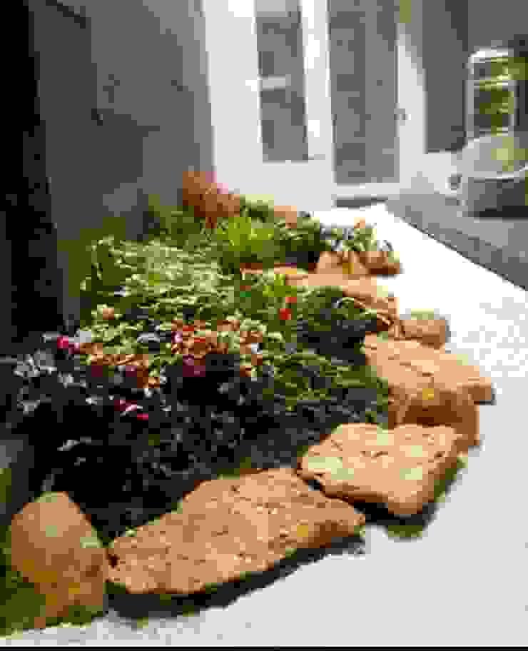 Jasa Taman Rumah || Taman Kering Oleh Tukang Taman Surabaya - Tianggadha-art Modern Batu