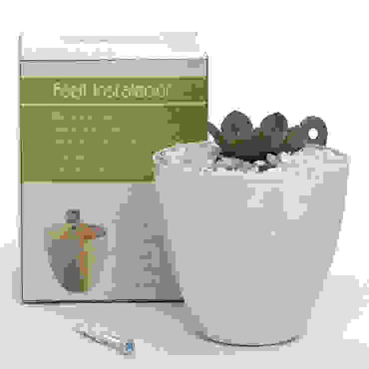minimalist  by Viridis Productos Eco Amigables, Minimalist Plastic