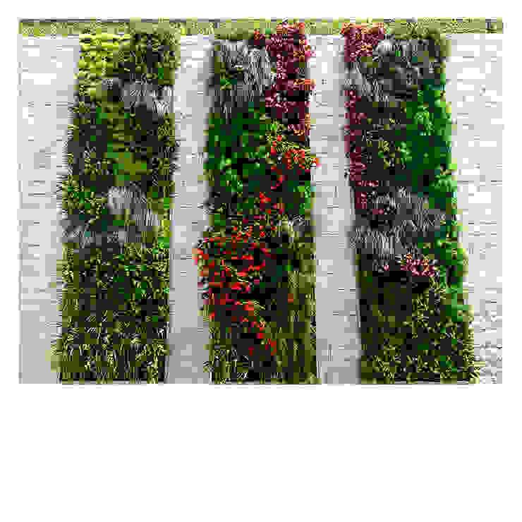 "Jardines verticales ""La Zagaleta"" Adriana Prado Paisajista Jardines de estilo moderno"