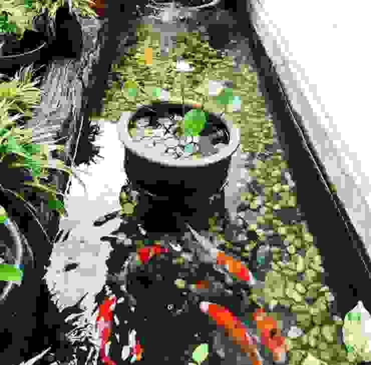 Jasa pembuatan kolam ikan minimalis Oleh Garden Style Surabaya