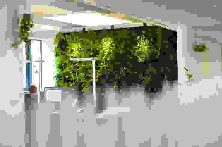 Begrünte Wände :  Bürogebäude von Kaldma Interiors - Interior Design aus Karlsruhe,Modern