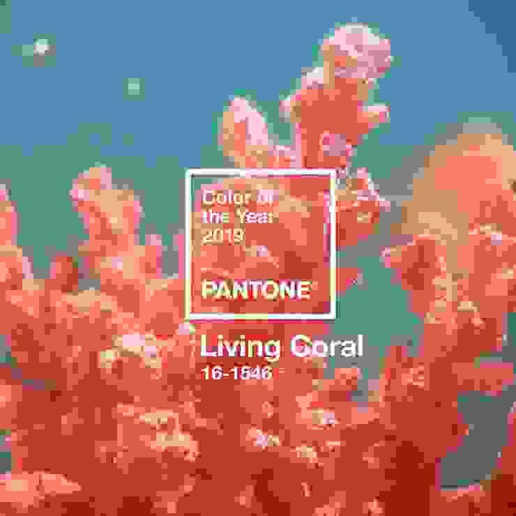 Estudio Coral de Pragma - Diseño Moderno
