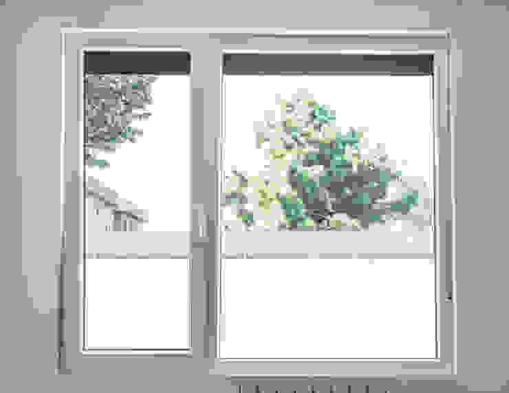 MODULAR HOME Скляні двері Скло Білий