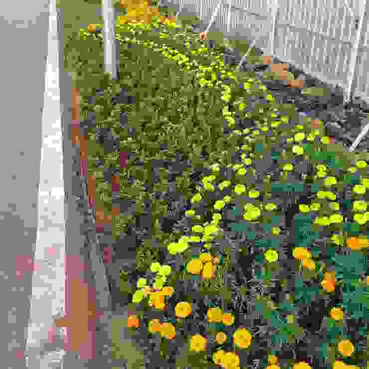 Taman Jalan Oleh Gardener Landscape Industrial