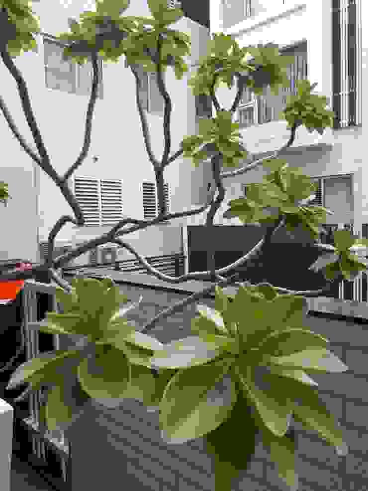瓷磚白華 美化DIY 根據 新綠境實業有限公司