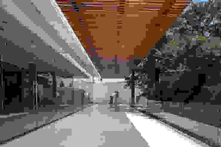 LUCERNARIO de CANOCANELA arquitectura