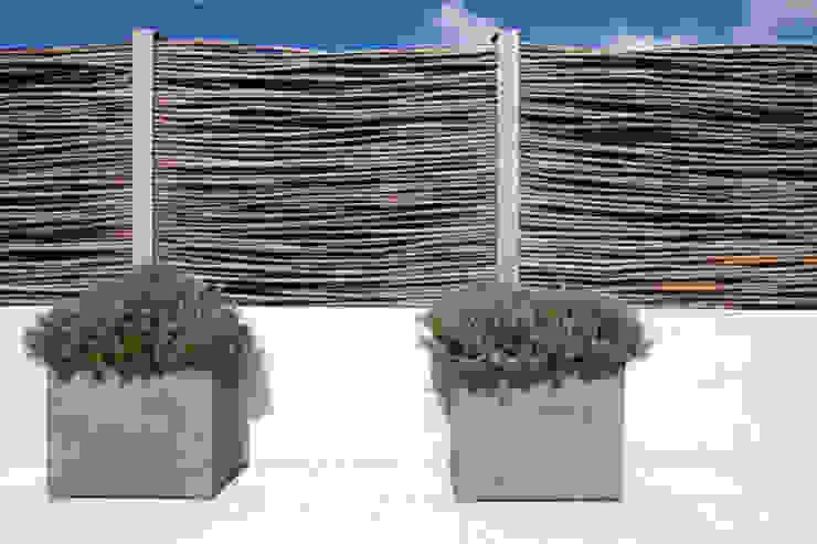 Hochwertige Freiraumgestaltung eines Einfamilienhauses Moderner Garten von CLAUDIA GROTEGUT ARCHITEKTUR + KONZEPT Modern