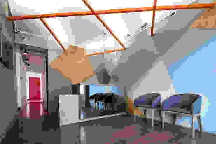 ARB recepción Pasillos, vestíbulos y escaleras de estilo moderno de entrearquitectosestudio Moderno Tableros de virutas orientadas