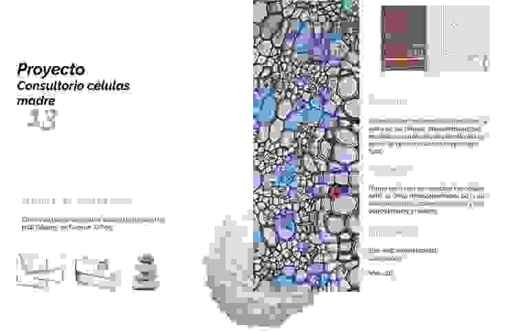 Clínica células madre Hospitales de estilo minimalista de Andrea Loya Minimalista