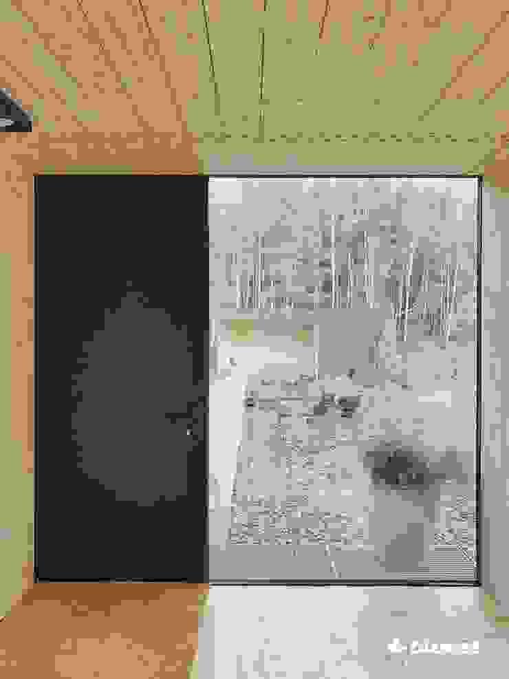 Minimalist style doors by Przedsiębiorstwo Bizmet Spółka z o.o. Minimalist Aluminium/Zinc