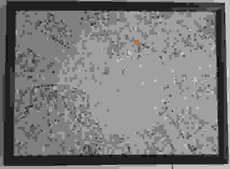 Partmozika Walls & flooringPictures & frames Tiles Beige