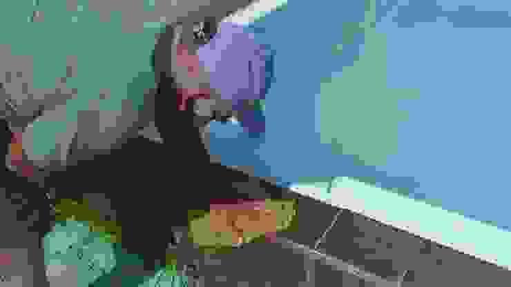 Limpiar los bordes de Pool Solei