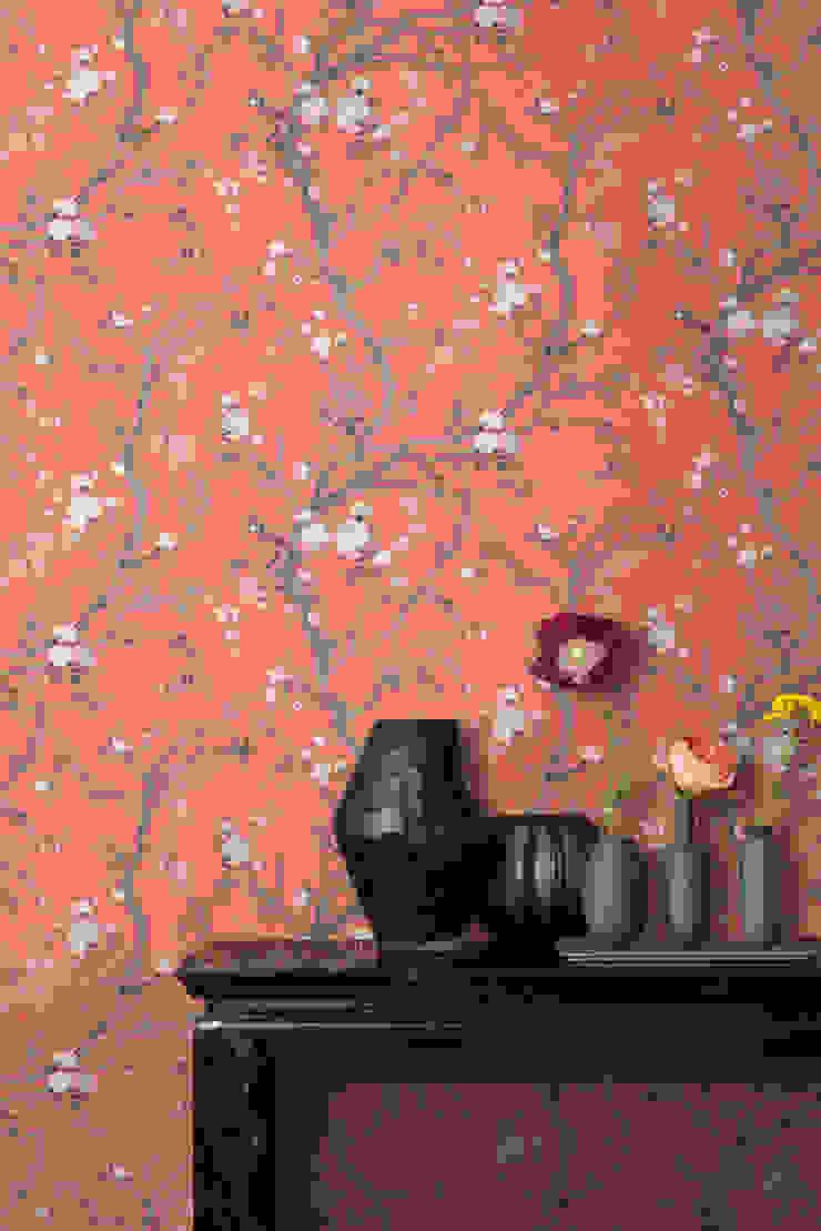 TapetenStudio.de Paredes y pisos de estilo asiático Naranja
