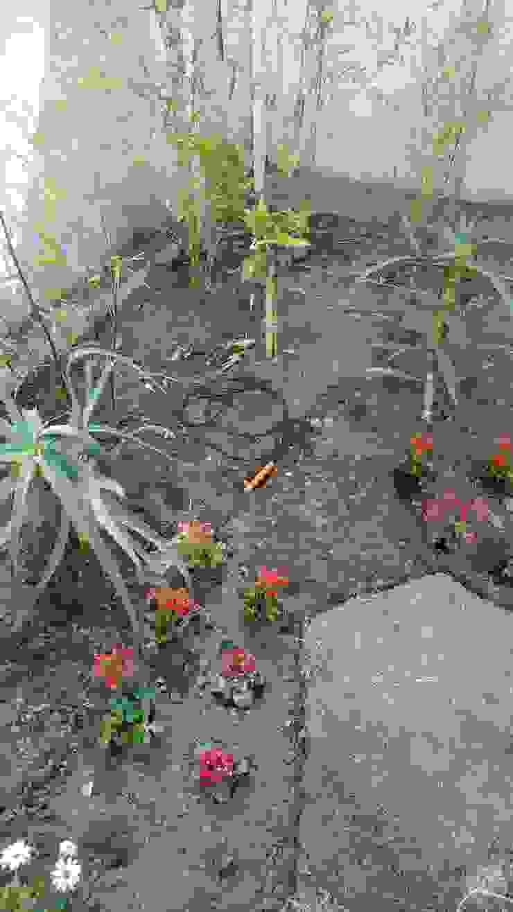 OBRA EN PROCESO HZ ARQUITECTOS SANTIAGO DISEÑO COCINAS JARDINES PAISAJISMO REMODELACIONES OBRA Jardines de estilo minimalista