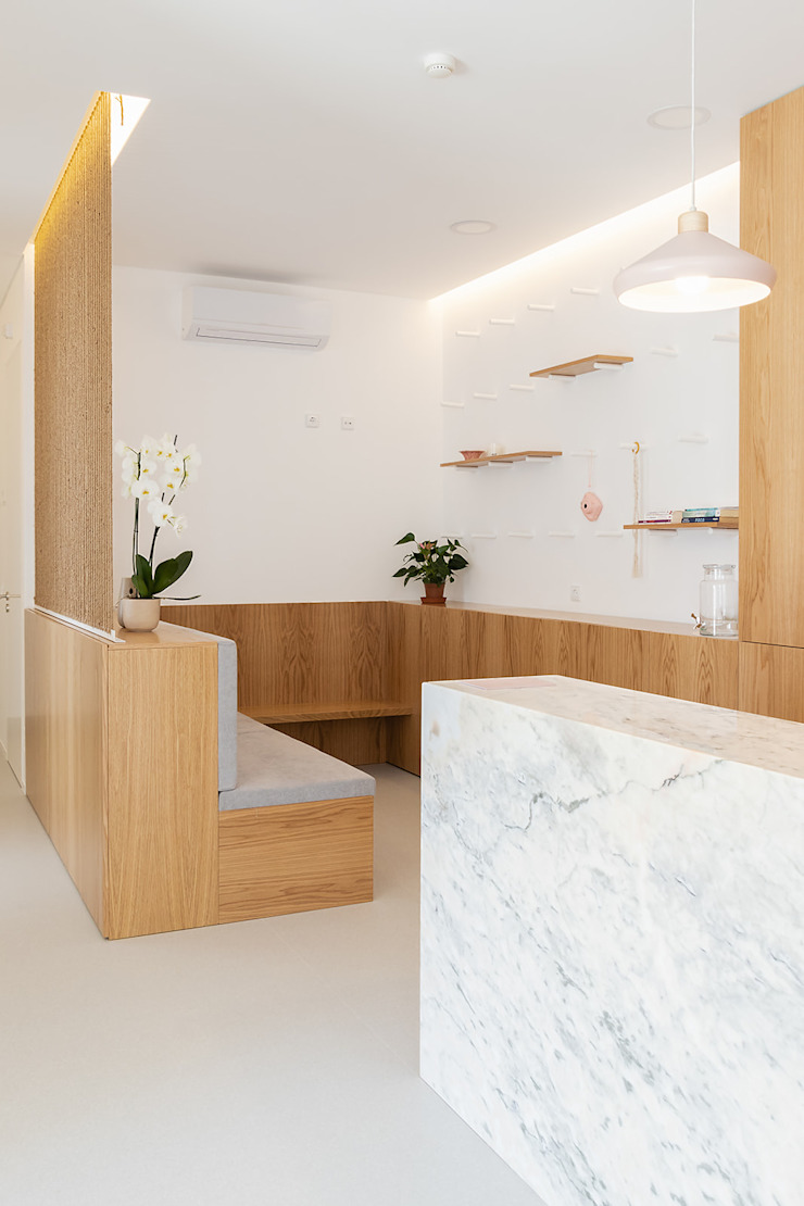 Qiarq . arquitectura+design Minimalist clinics Wood Wood effect