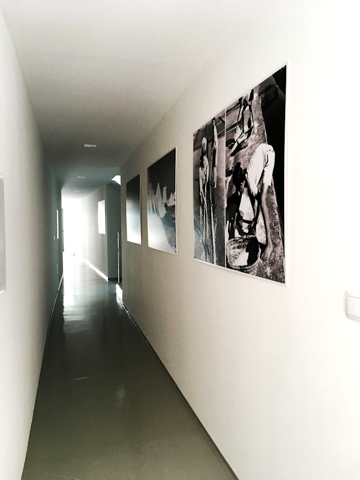GAAPE - ARQUITECTURA, PLANEAMENTO E ENGENHARIA, LDA Pasillos, vestíbulos y escaleras de estilo moderno