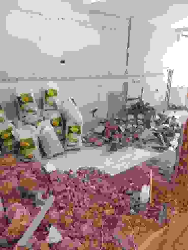 Época de demolición de Arqmania