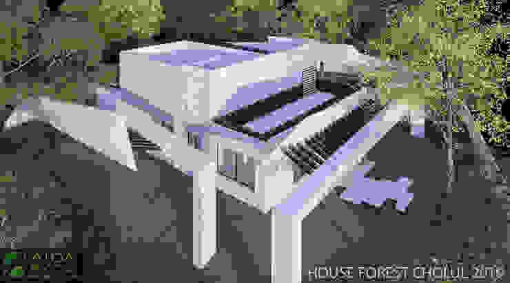 VISTA FOREST HOUSE de AIDA TRACONIS ARQUITECTOS EN MERIDA YUCATAN MEXICO Moderno