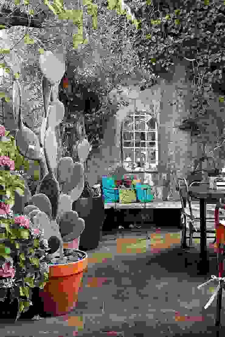 Rustic style gardens by Plaza Yapı Malzemeleri Rustic Ceramic