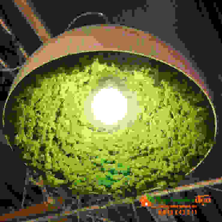 Thi công tường Rêu Nội Thất Hiên, sân thượng phong cách chiết trung bởi Công Ty TNHH XD Cảnh Quan Vườn Nhà Đẹp Chiết trung