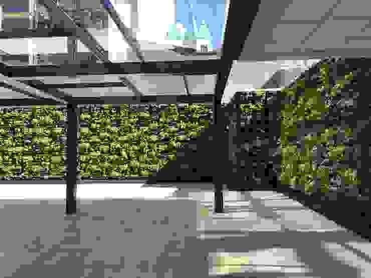 Jardín Vertical con Sistema Cangurü de Helecho SAS Moderno