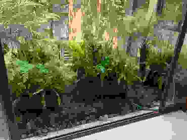 MANTENIMIENTO DE ESPACIOS : Jardines de estilo  por JARDINERIA EMPRESARIAL.COM.MX, Moderno
