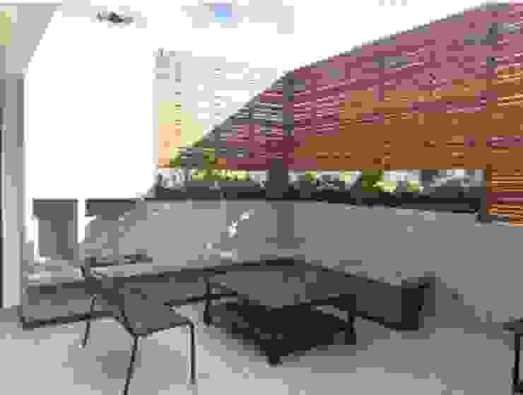 RESIDENCIAL   ROOF GARDEN ROMA SUR Balcones y terrazas modernos de Tk arquitectura Moderno