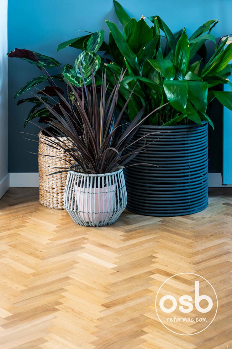 modern  by osb arquitectos, Modern Wood Wood effect