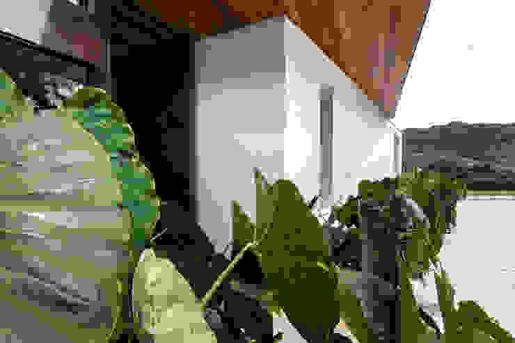 CASA ENTREMUROS de BASSICO ARQUITECTOS Moderno Madera Acabado en madera