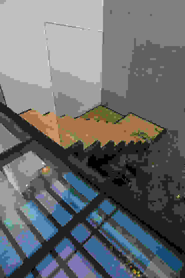 Puente de Cristal 21arquitectos Pasillos, halls y escaleras minimalistas