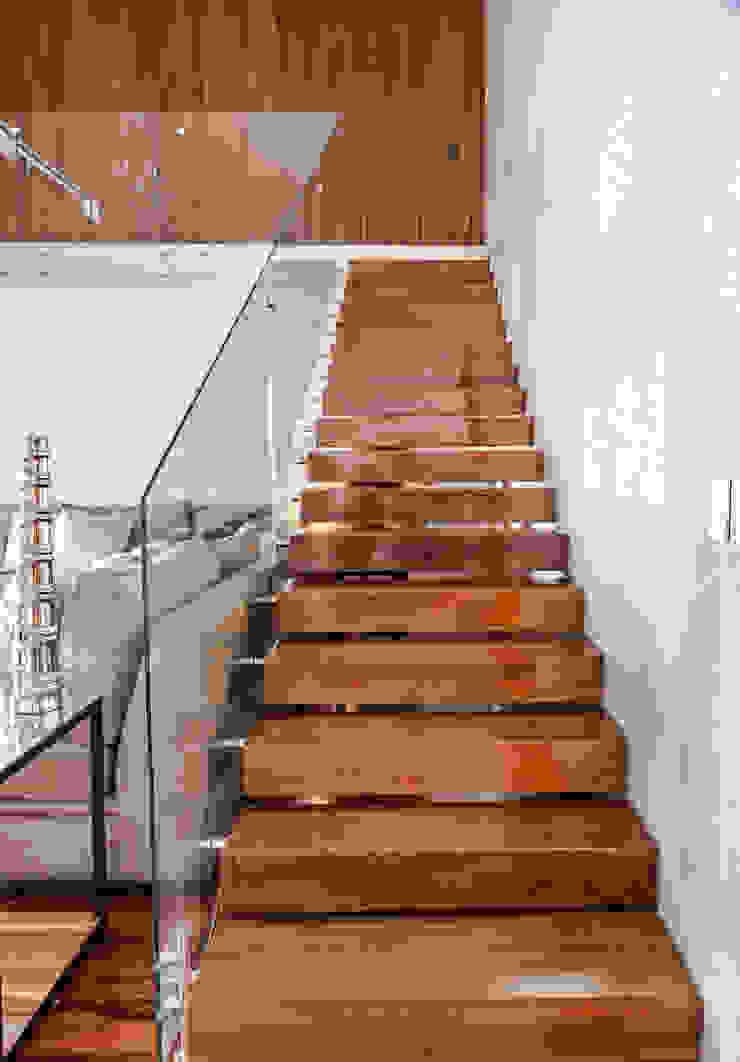 ESCALERAS de GENETICA ARQ STUDIO Moderno Madera Acabado en madera