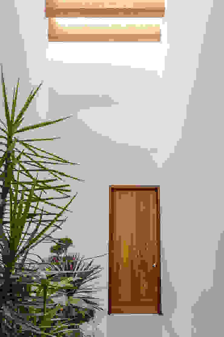 PASILLO de GENETICA ARQ STUDIO Moderno Madera Acabado en madera