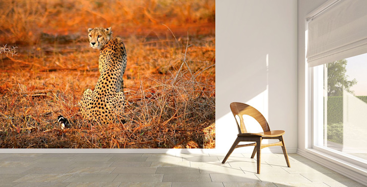 Leopard Safari: country  by United wallcoverings, Country Textile Amber/Gold