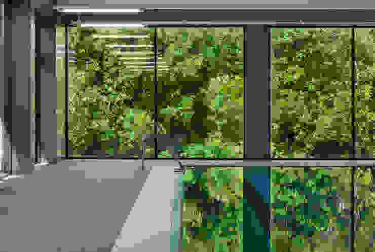 Stades modernes par asieracuriola arquitectos en San Sebastian Moderne Aluminium/Zinc