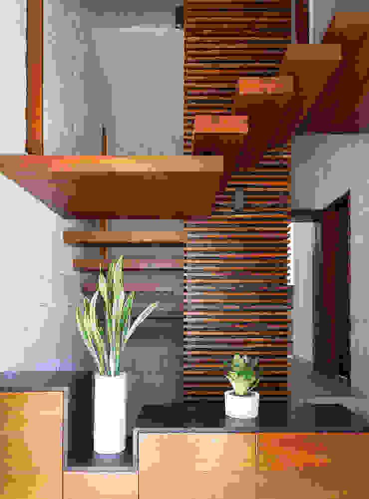 Daniel Cota Arquitectura   Despacho de arquitectos   Cancún Stairs Wood Wood effect