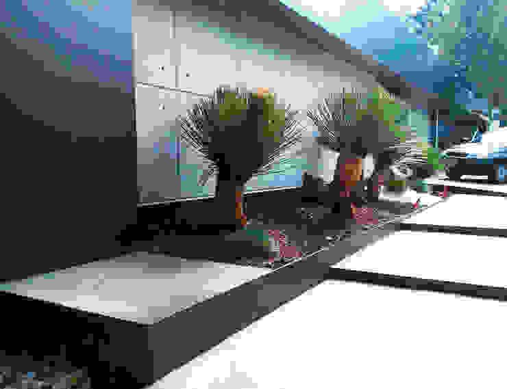 Casa Habitación Palmas Bosques de las Lomas : Pasillos y recibidores de estilo  por Proyecto 3Catorce,