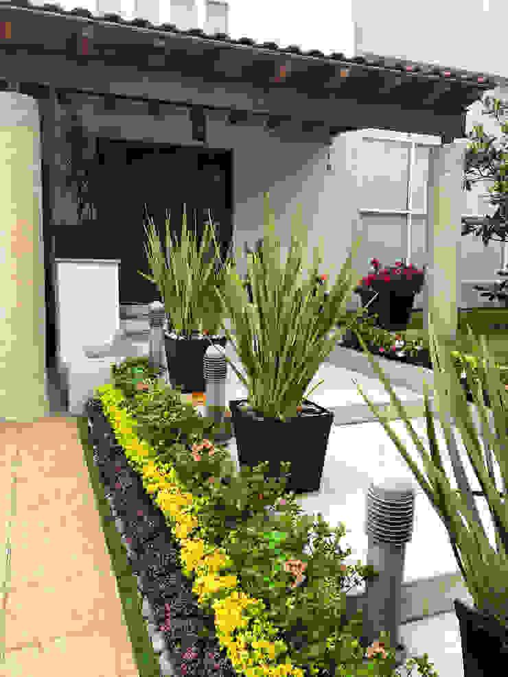 Entrada principal de hogar Cattleya jardinería JardínPlantas y flores