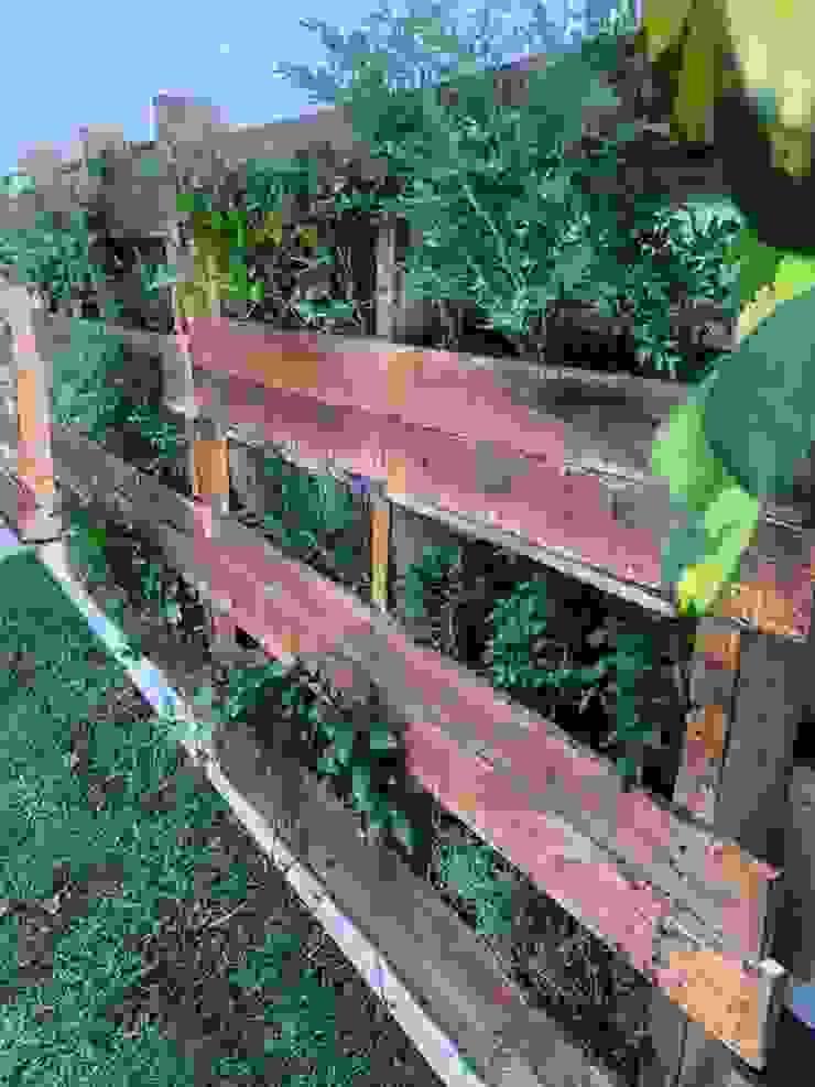 Cattleya jardinería JardinMeubles Effet bois