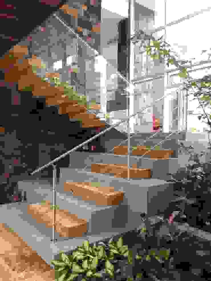 Casa 97A - Escalera Patio de TALLER 11 Arquitectos Moderno Piedra