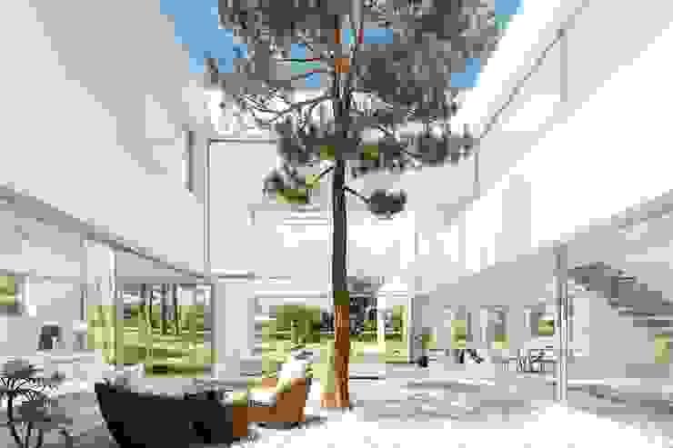 Otto Medem Arquitecto vanguardista en Madrid Дзен-сад