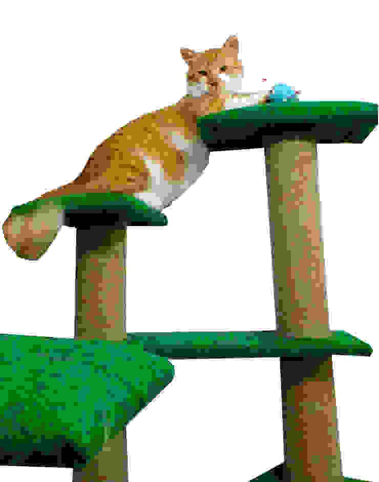 Gimnasio para gatos, referencia Amazonas de ModuCat Estructuras modulares para gatos Moderno Madera Acabado en madera