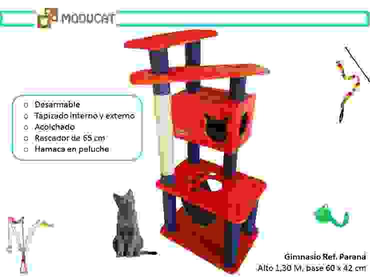 Gimnasio para gatos, referencia Paraná de ModuCat Estructuras modulares para gatos Moderno Madera Acabado en madera