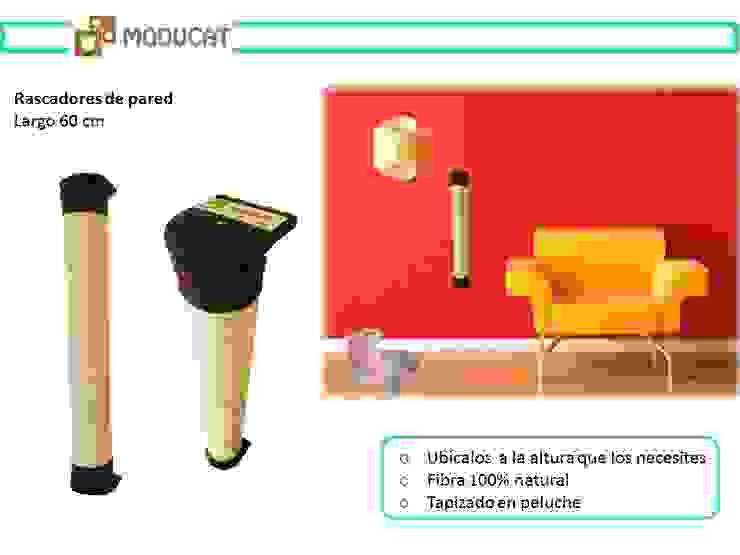 Rascadores para gato, para pared de ModuCat Estructuras modulares para gatos Moderno Madera Acabado en madera