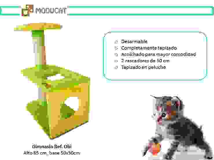 Gimnasio para gatos, referencia Obi de ModuCat Estructuras modulares para gatos Moderno Madera Acabado en madera