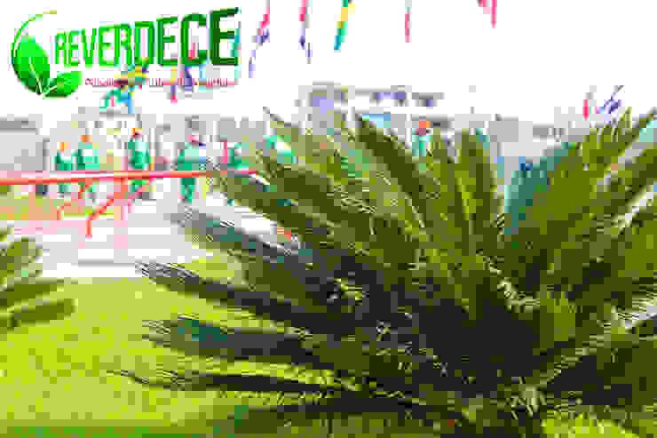 Parque de las Banderas de REVERDECE PERU SAC Moderno
